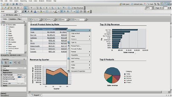 SAP Business Objects BI Suite